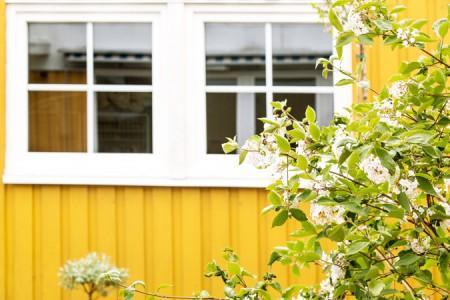 gult trähus vita fönster